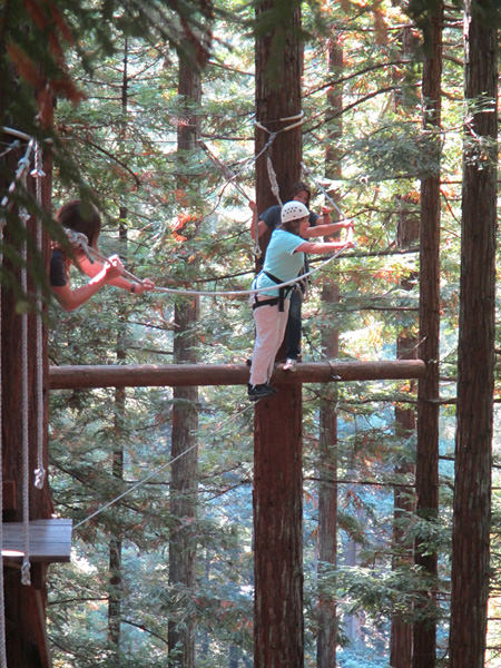 Sherri Eldridge crossing a rope line among the tree tops